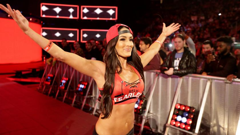 Who Attacked Nikki Bella?