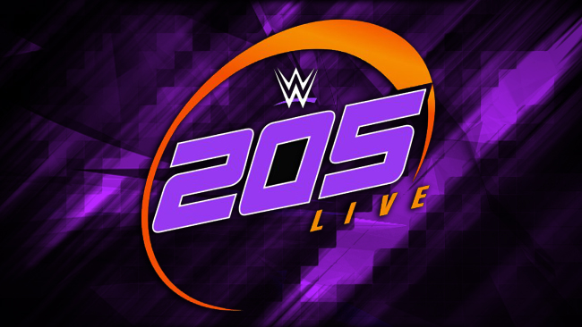 WWE 205 Live Review 12/13/2016